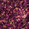 Listi vrtnic